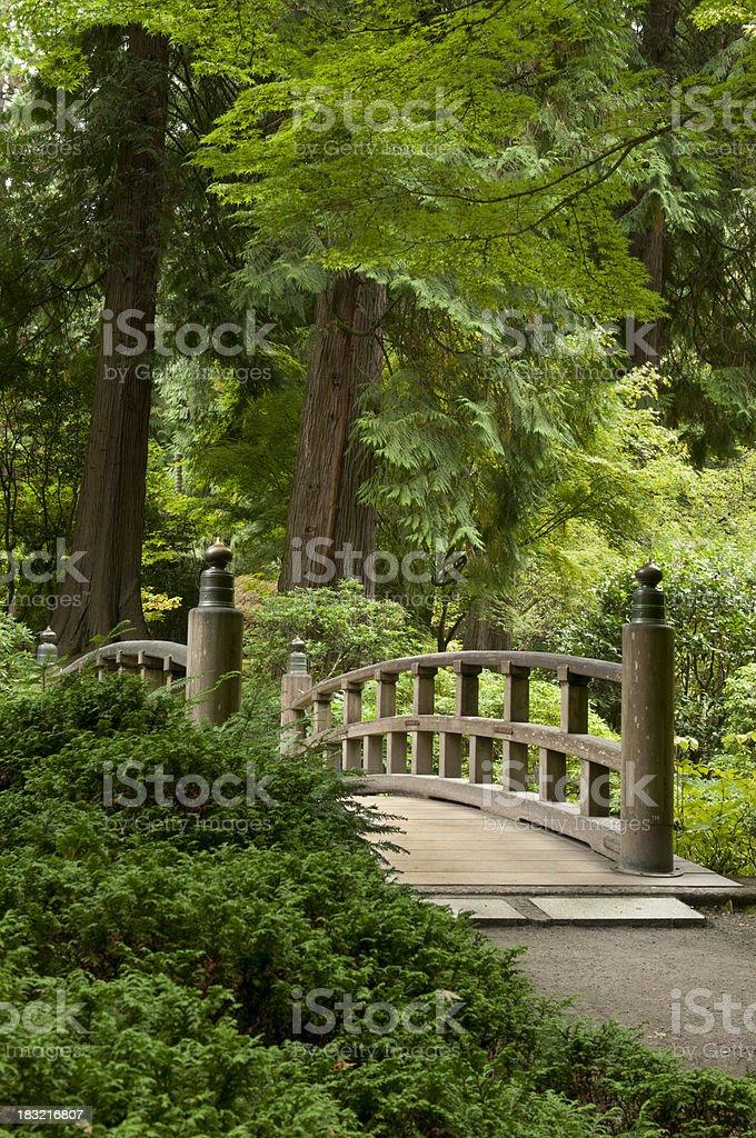 Oriental bridge stock photo