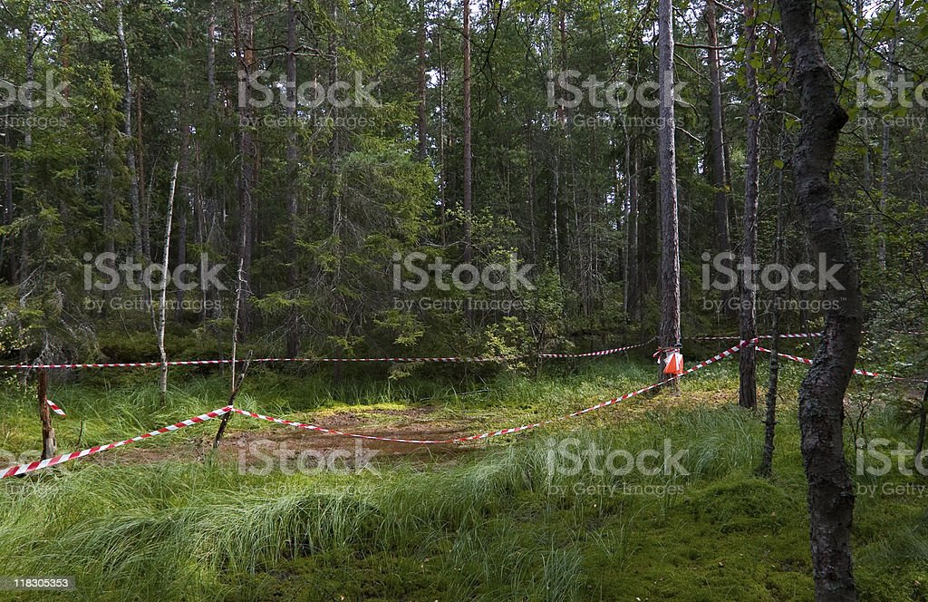 Orienteering Control at a Bog royalty-free stock photo