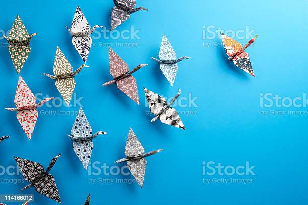 Origami birds picture id114166012?b=1&k=6&m=114166012&s=612x612&h=tl7ezsmmptctzuwnmevrvzpuf 3akgiyhgommgxyzbs=