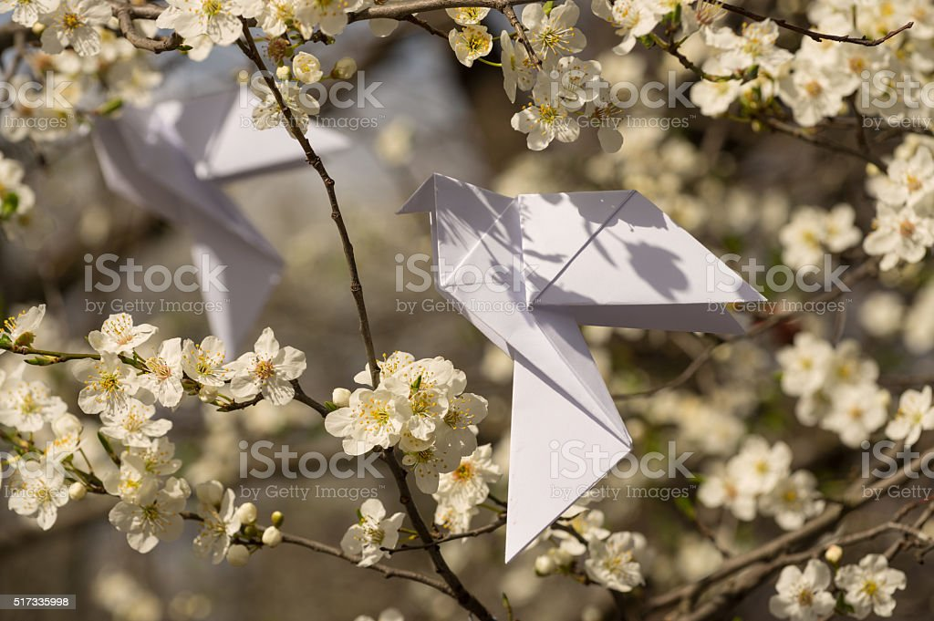 Origami doves on blooming spring tree stock photo