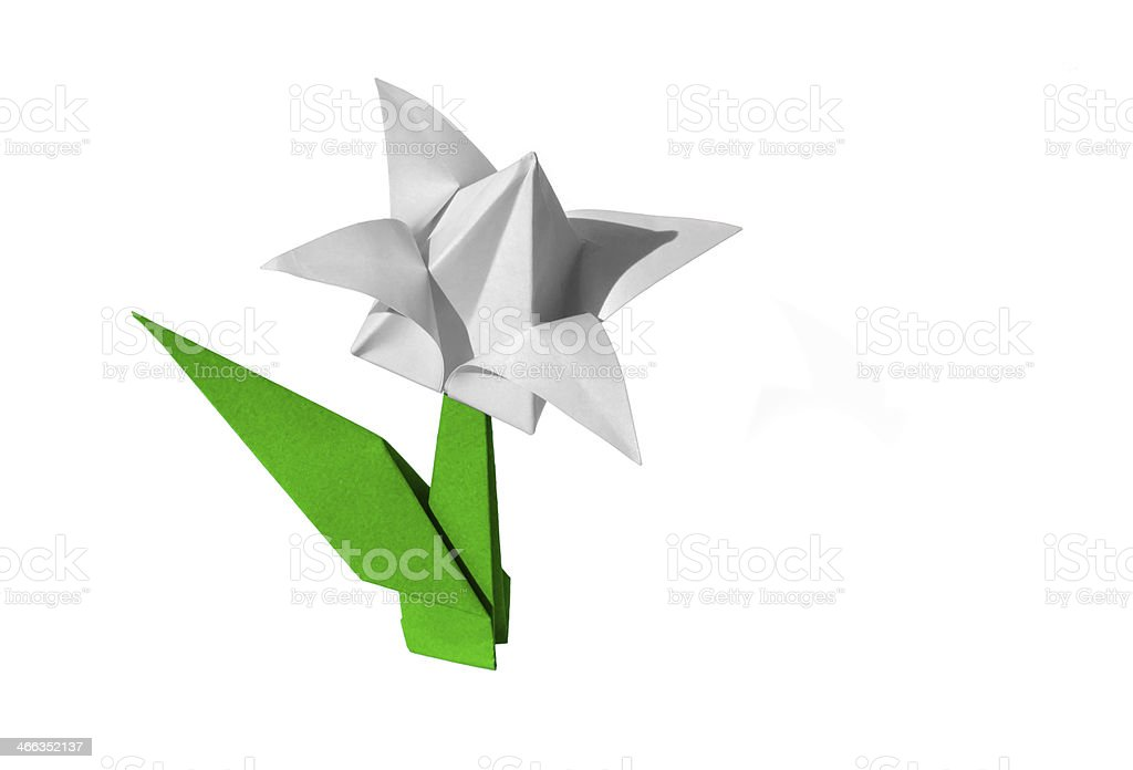 Origami flower white tulip isolated stock photo more pictures of origami flower white tulip isolated royalty free stock photo mightylinksfo