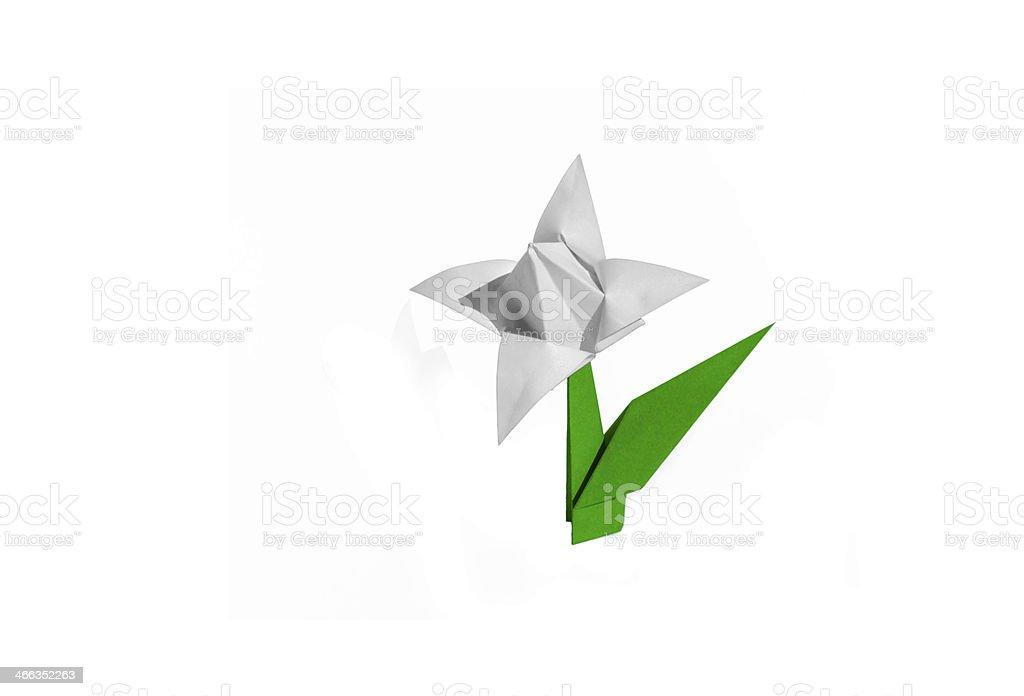 Origami flower white tulip isolated stock photo more pictures of origami flower white tulip isolated royalty free stock photo mightylinksfo
