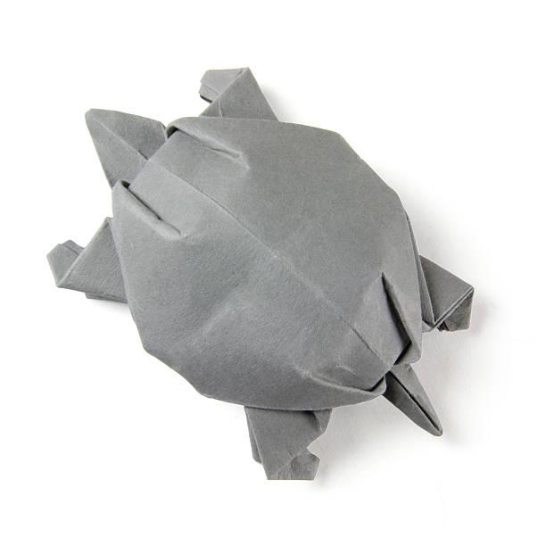 origami gray turtle - origami mobil stock-fotos und bilder