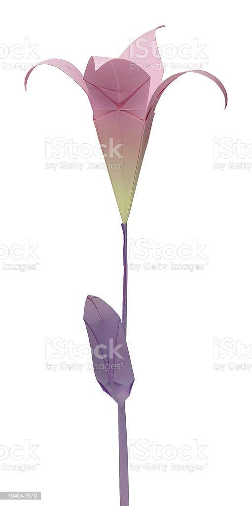 Origami lily women's day special — Steemit | 1024x511