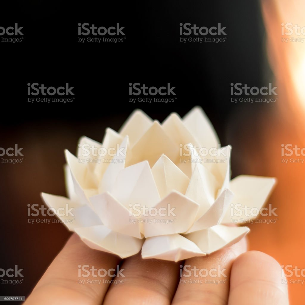 Origami Lotus Flower Stock Photo More Pictures Of Defocused Istock