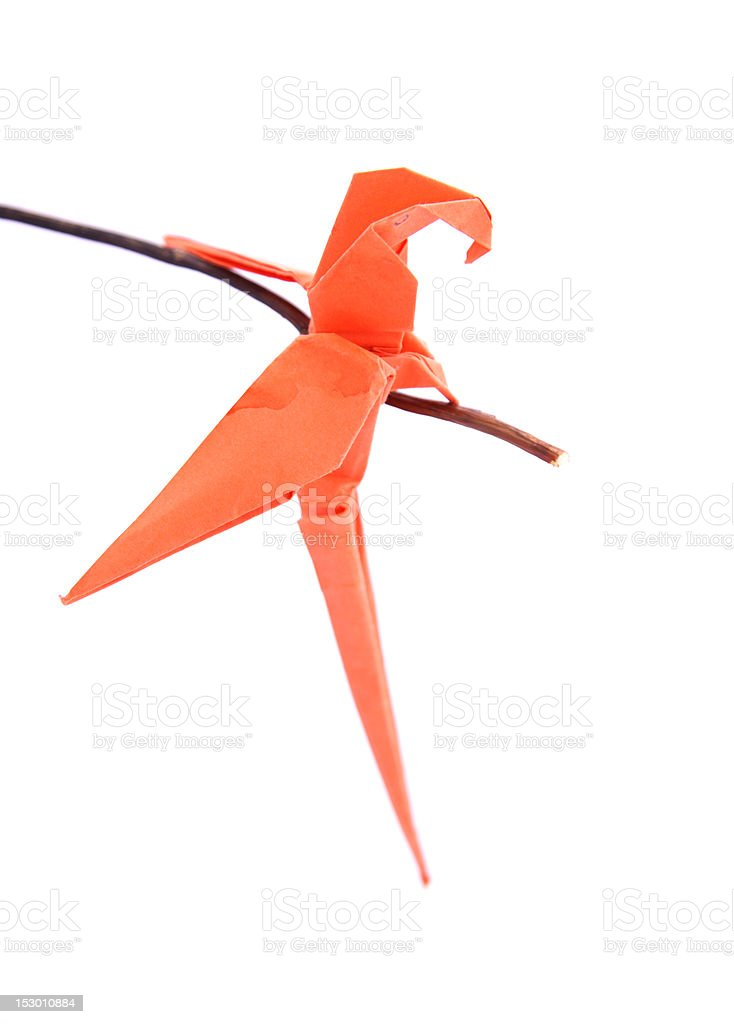 Origami Parrot | Designed and folded by Mindaugas Cesnaviciu ... | 1024x734