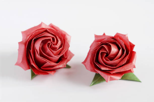 Royalty Free Origami Rose Pictures Images And Stock Photos Istock