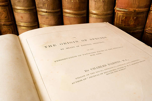 origin of species - charles darwin - darwin stock photos and pictures