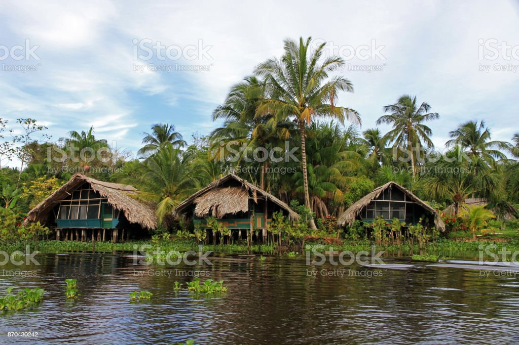 Orinoco River stock photo