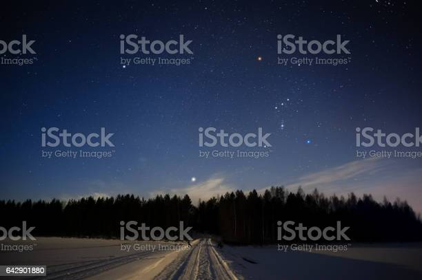 Photo of Orion constellation and Sirius above forest in winter sky