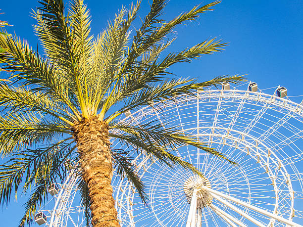 orlando, florida, usa, january 4, 2016: eye orlando, ferris wheel - orlando florida photos stock photos and pictures