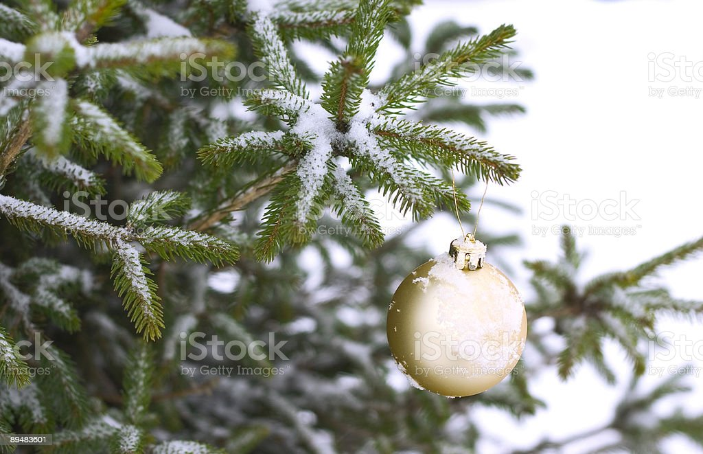 ornament on pine tree covered in snow royalty-free stock photo