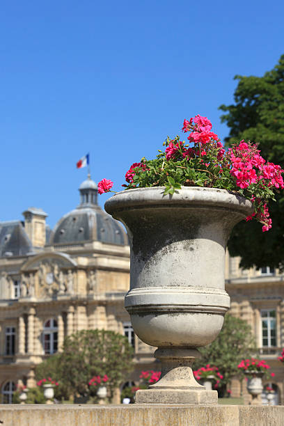 Top 60 Flower Pot Decoration Le Jardin Du Luxembourg Park Stock ...