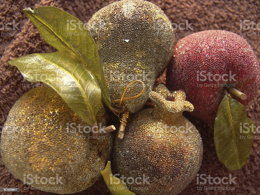 Ornamental Fruits royalty-free stock photo