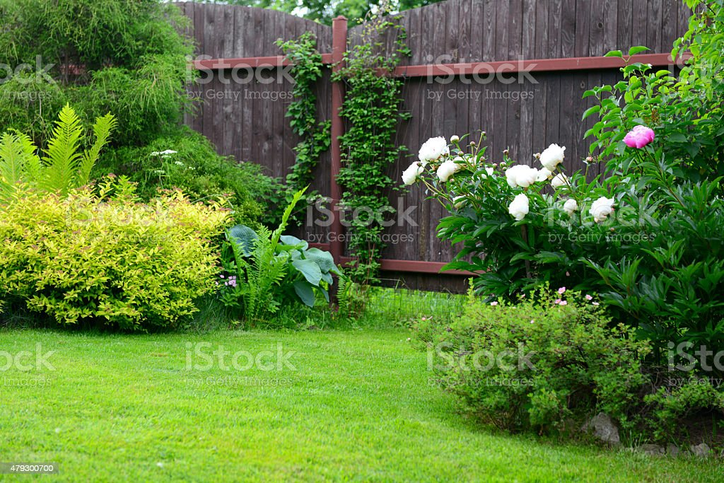 Photo de stock de Jardin Dornement Avec Pelouse images libres de ...