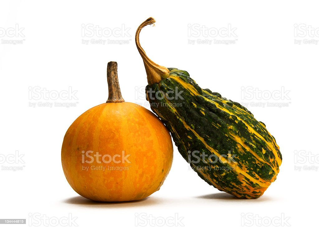 Ornamental gourds stock photo