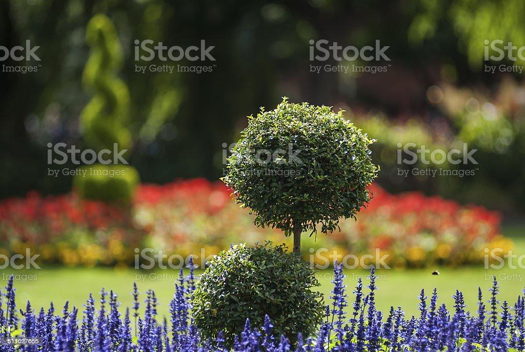 Parc modèle jardin - Photo