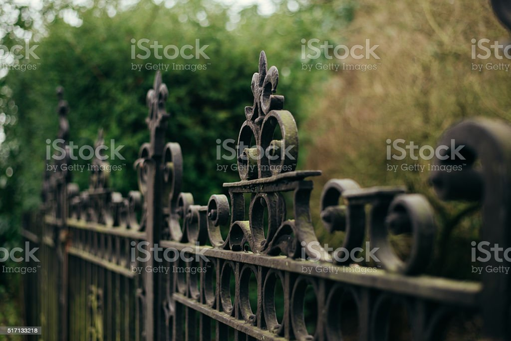 Ornamental steel gate closed in front of hedgerow stock photo