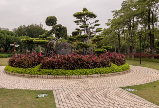 Ornamental topiary in Bailuzhou Park in Xiamen stock photo