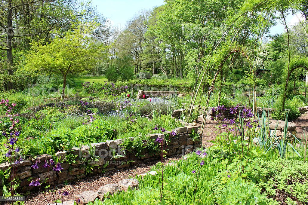 Photo showing an ornamental vegetable garden, planted with a variety...