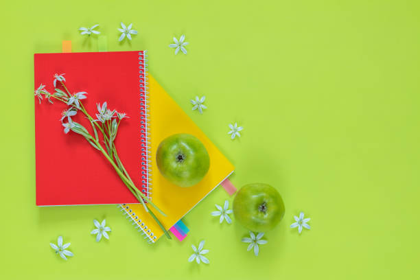 Ornithogalum and red and yellow notebooks, green apples stock photo