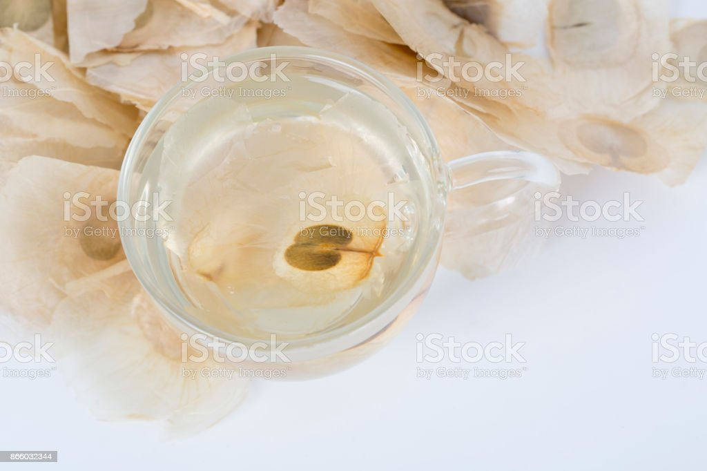 Oroxylum indicum seed and cup of tea. stock photo