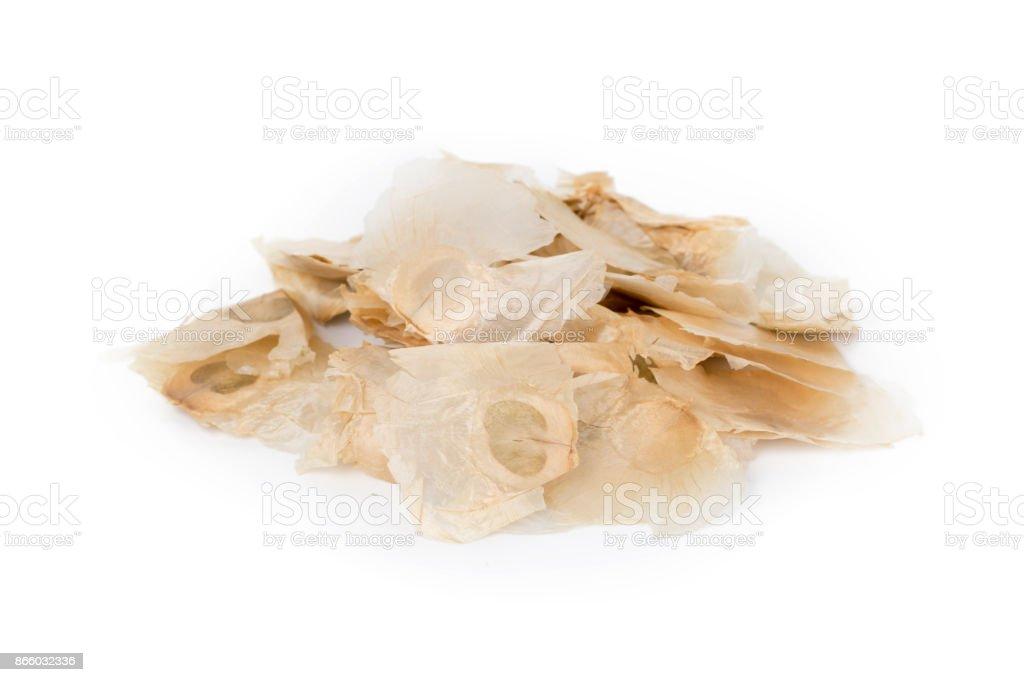 Oroxylum indicum seed on white background. stock photo