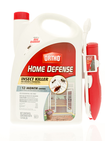 Ortho Home Defense Stock Photo Download Image Now Istock