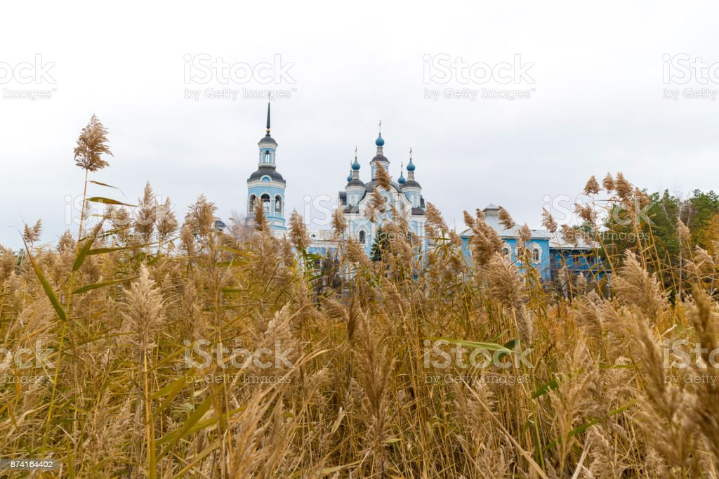 Orthodox church behind a wall of dry cane. stock photo