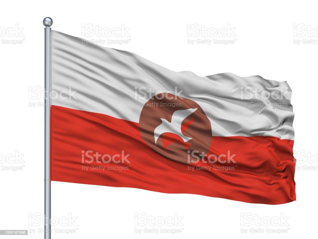 Osho Flag On Flagpole, Isolated On White stock photo
