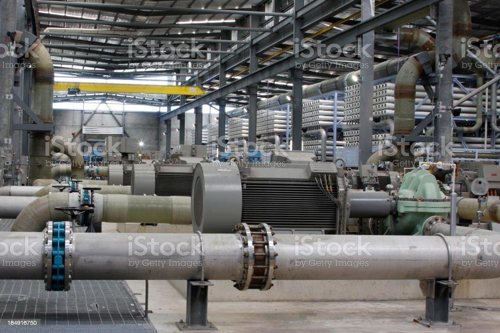 Osmosis stock photo