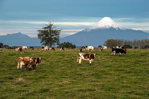 Osorno-Vulkan, Lake Region, Chile – Foto