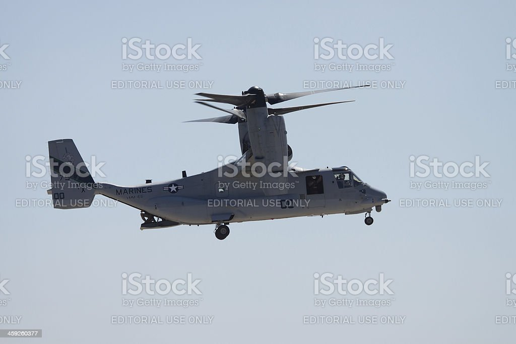Osprey Takeoff royalty-free stock photo