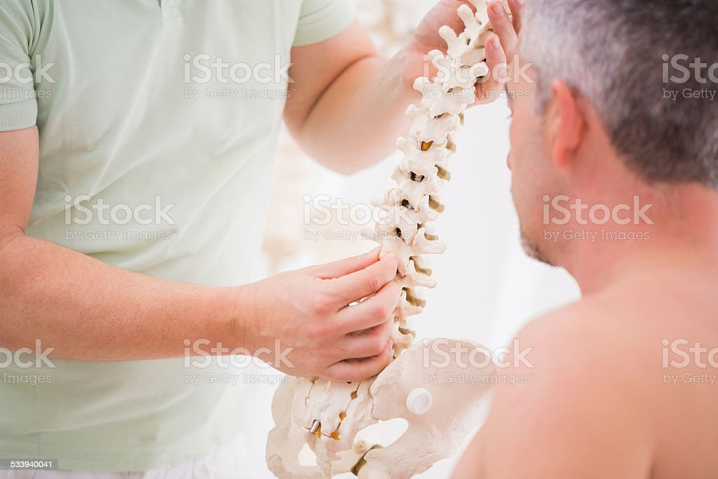 osteopath showing the vertebras of the spin to his patient stock photo