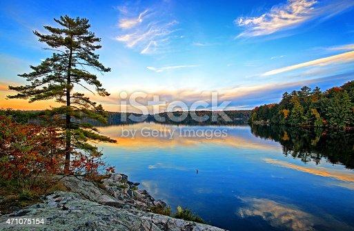 istock Ostler Lake Pine Tree 471075154