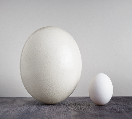 Ostrich egg and chicken egg on black table.