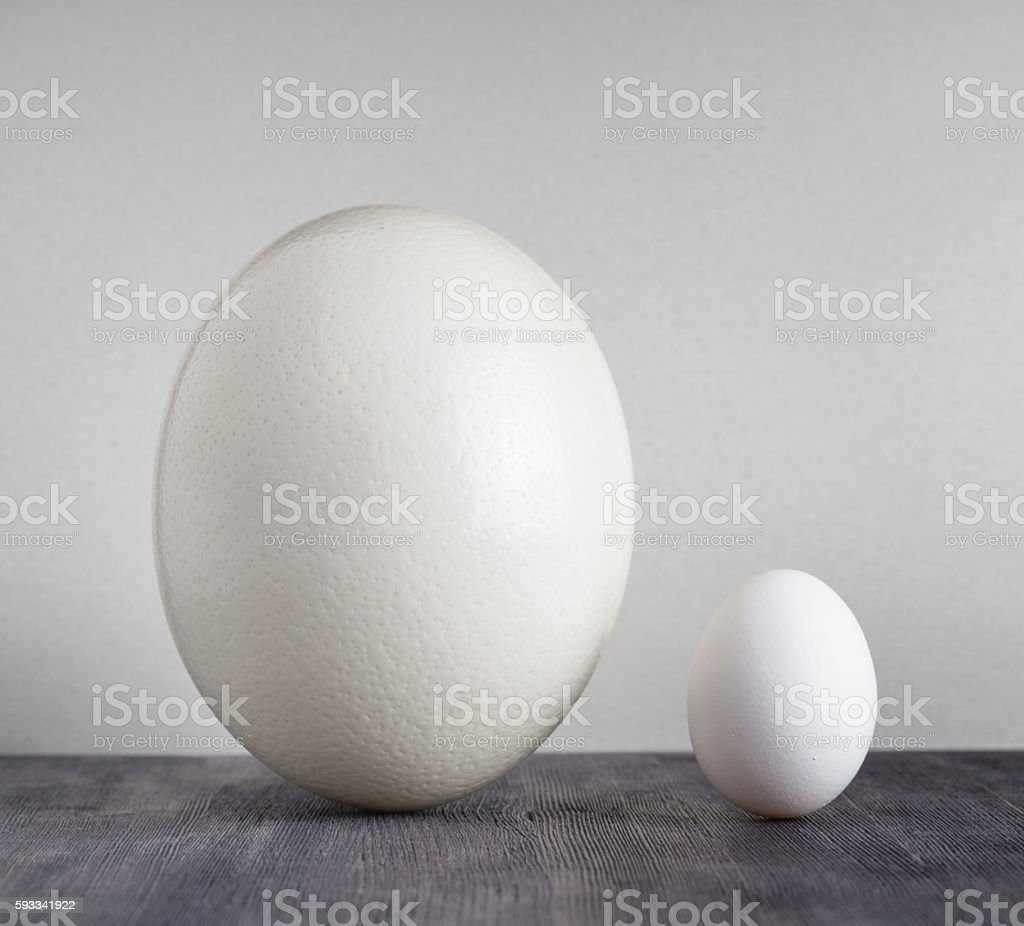 Ostrich egg and chicken egg on black table stock photo