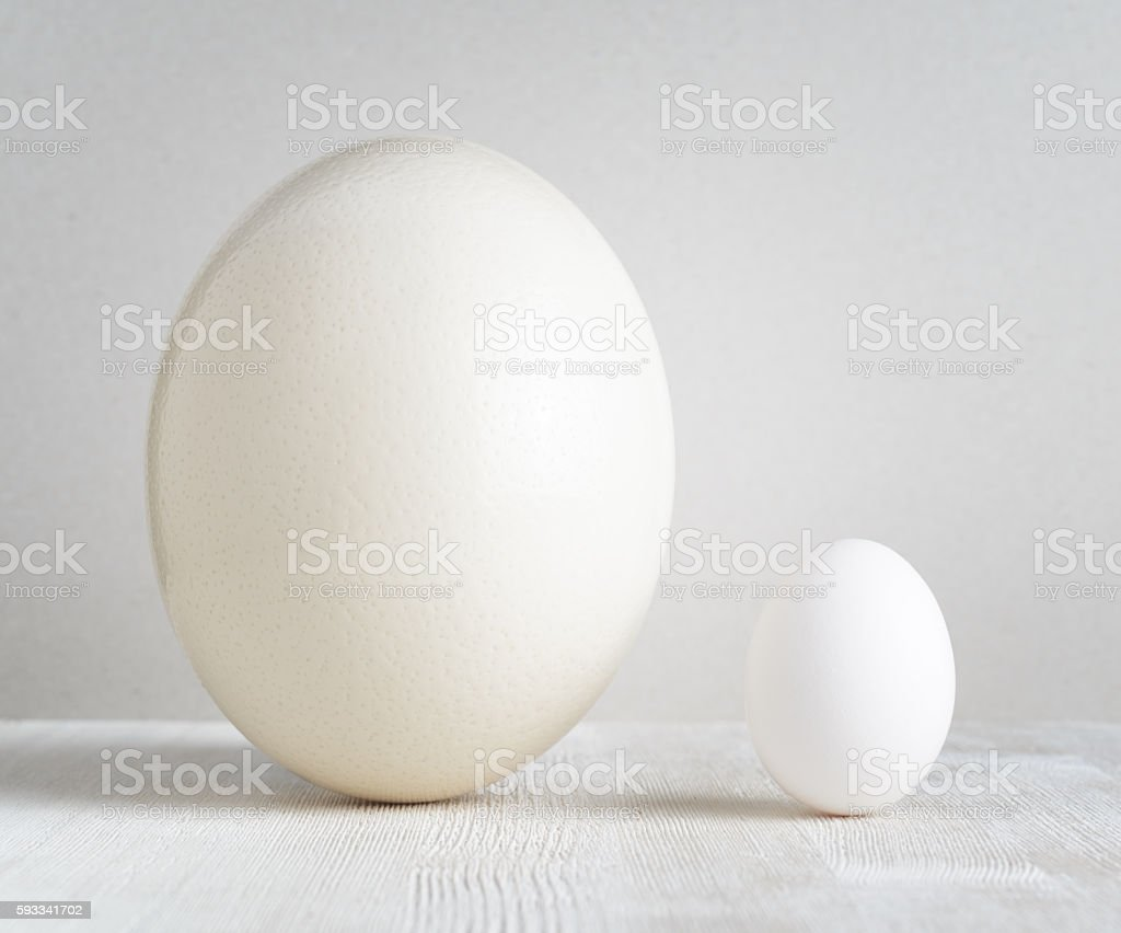 Ostrich egg and chicken egg on white table stock photo