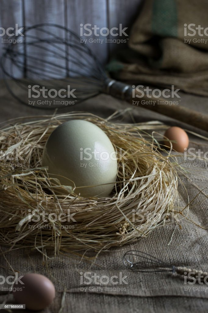 Ostrich egg in nest, big and small eggbeaters on sackloth background. stock photo