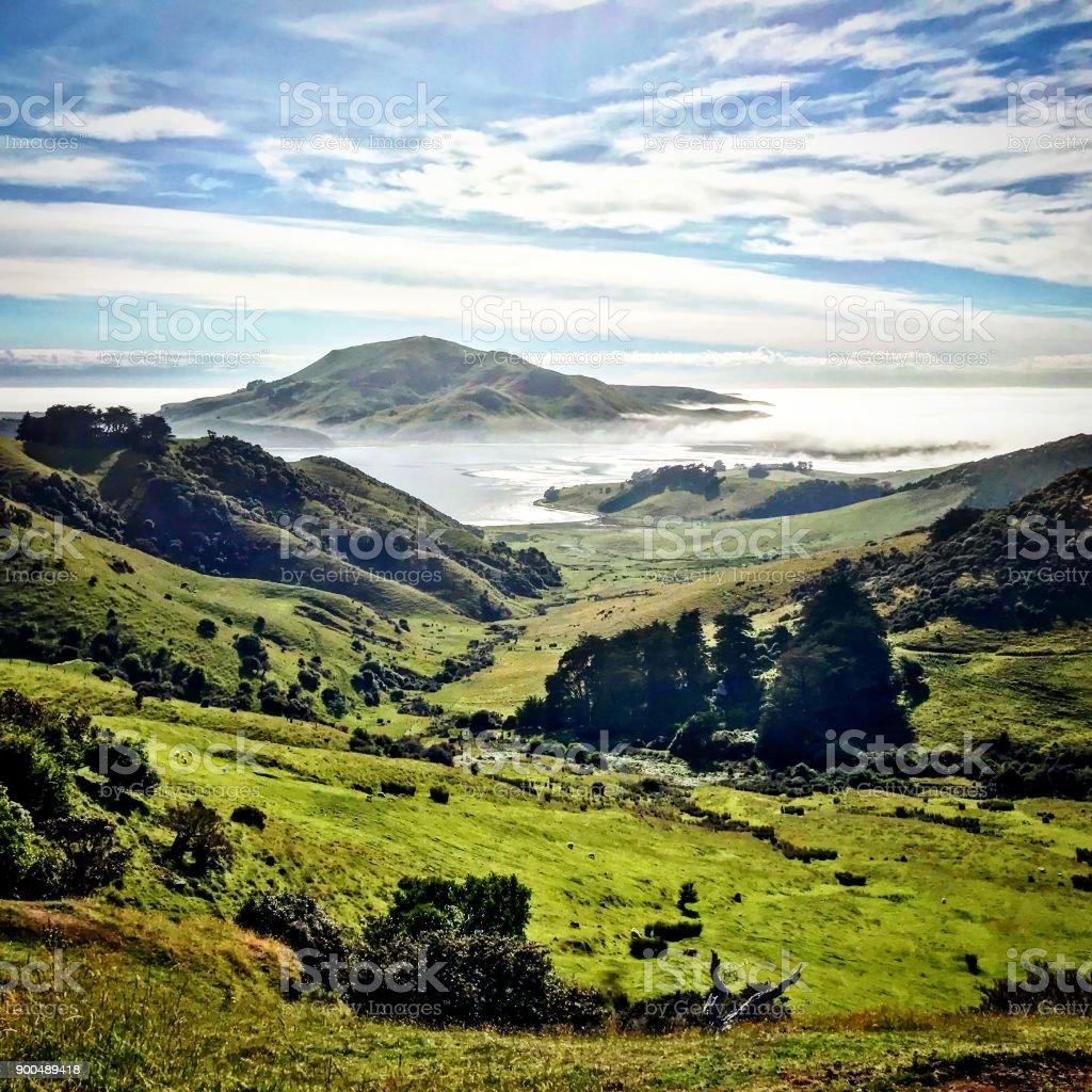 Otago Peninsula stock photo