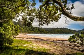 Otara Bay serenity Coromandel, New Zealand