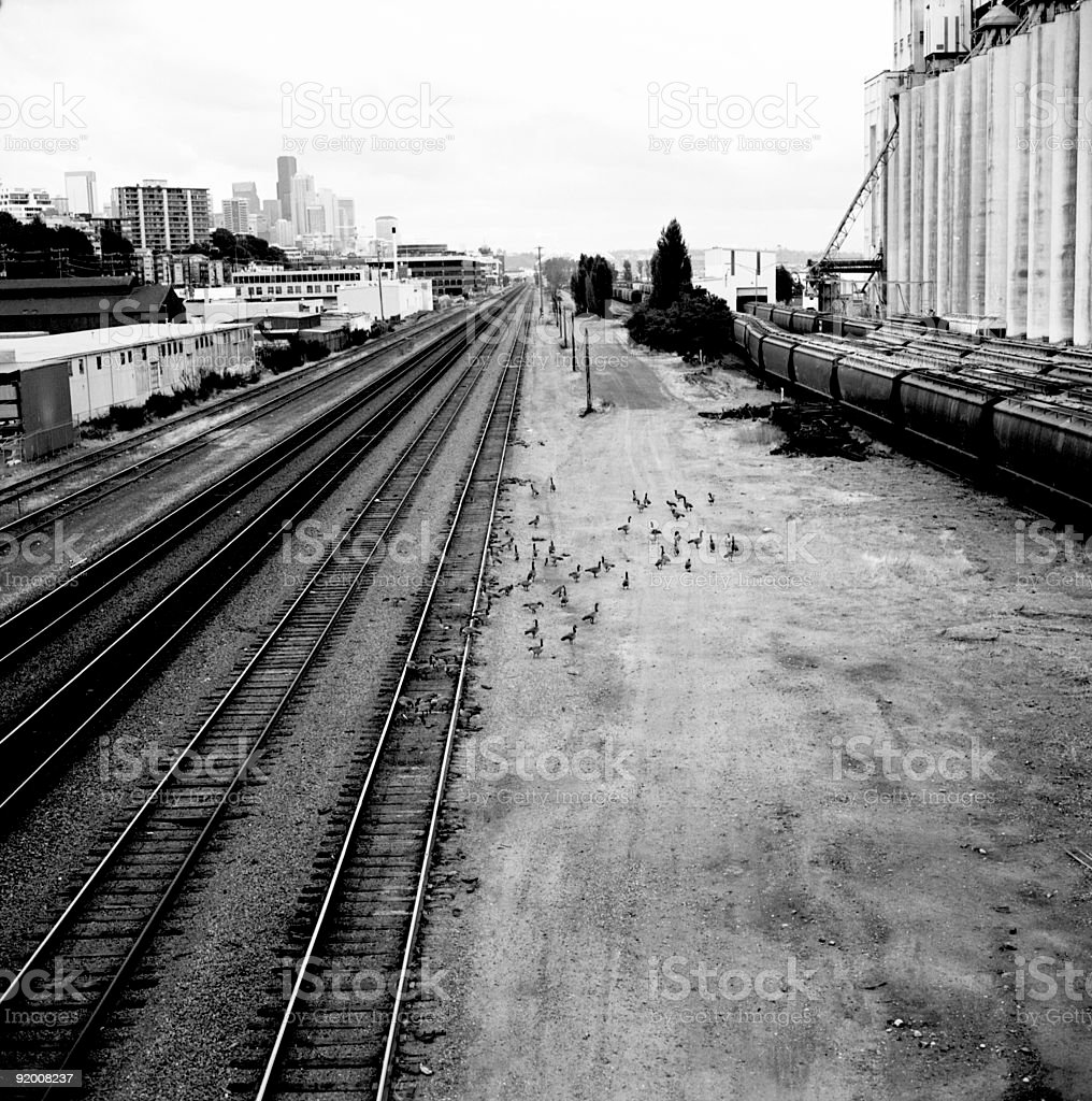 other side of the tracks royalty-free stock photo