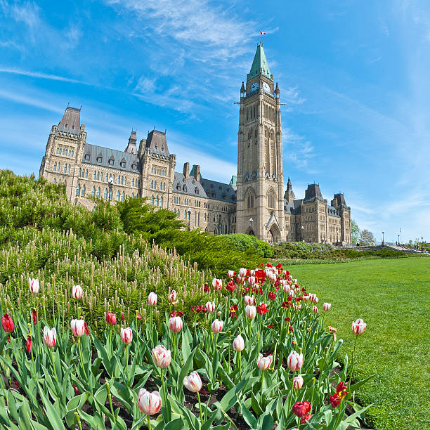 ottawa parliament building and tulips - canada parliament stock photos and pictures