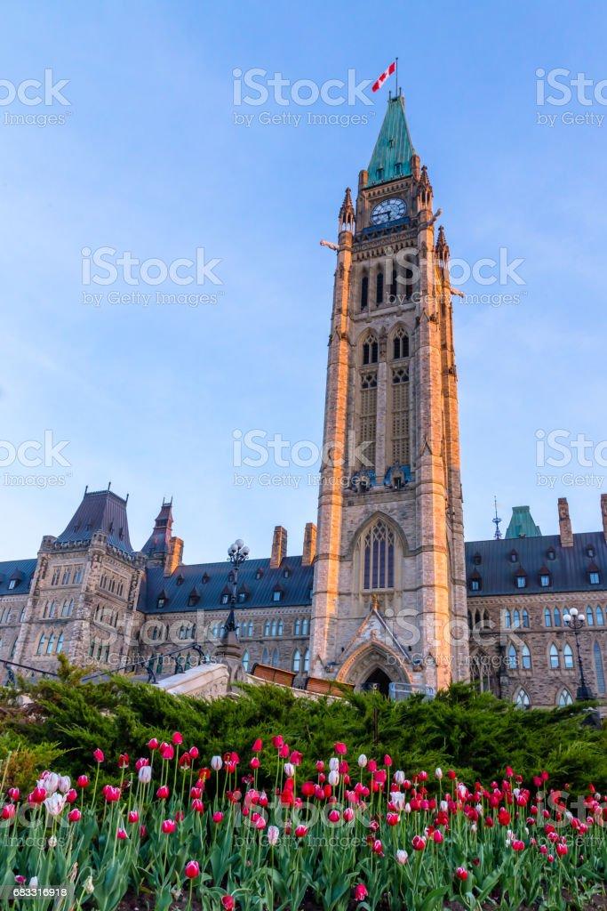 Ottawa tulips festival royalty-free stock photo