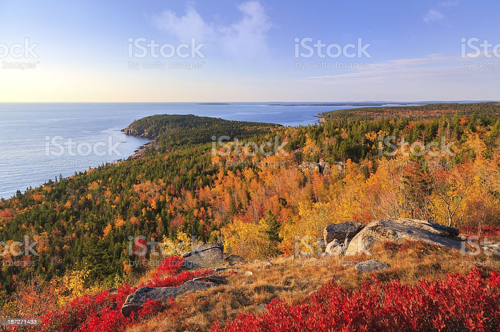 Otter Point from Gorham Mountain in Autumn, Acadia National Park stock photo