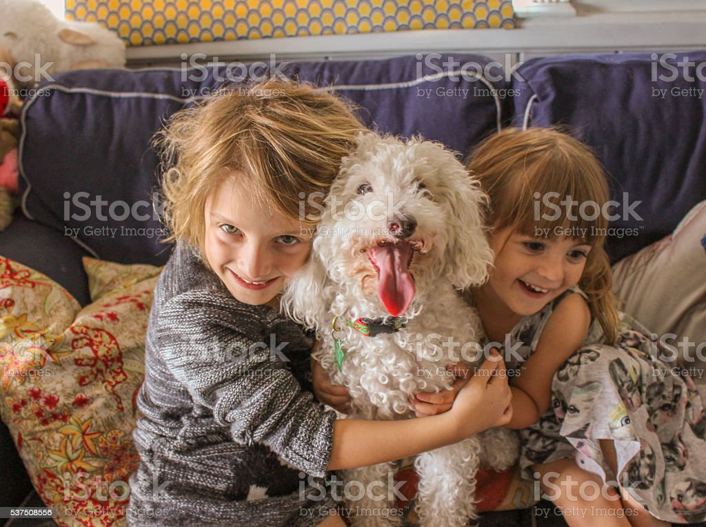Our dog stock photo