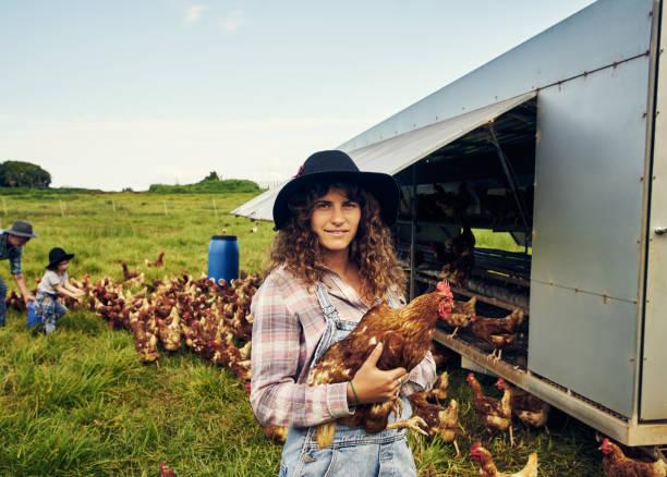 unser bauernhof ist komplett aus freilandhaltung - landwirtschaftlicher beruf stock-fotos und bilder