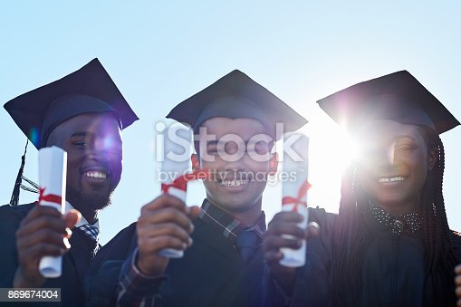 istock Our hard work has earned us this great success 869674004
