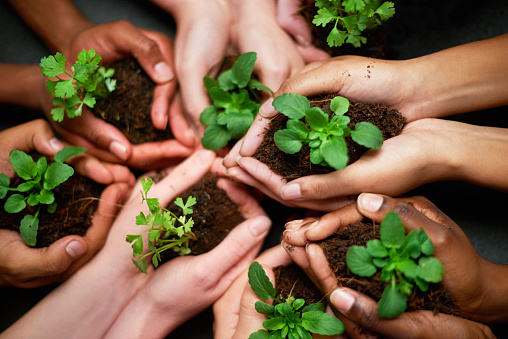 Shot of a group of people each holding a plant growing in soil