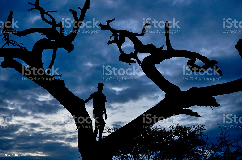 Out of Africa stock photo